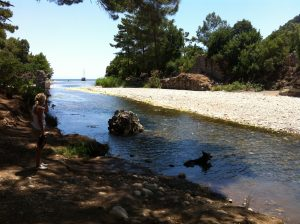 Ein Süsswasserfluss schlängelt sich zum Meer